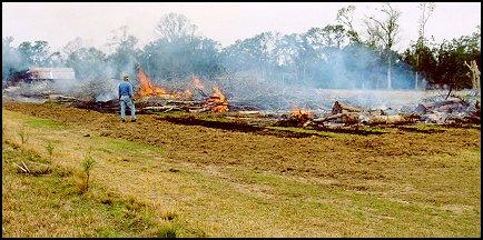 Burning Katrina Debris