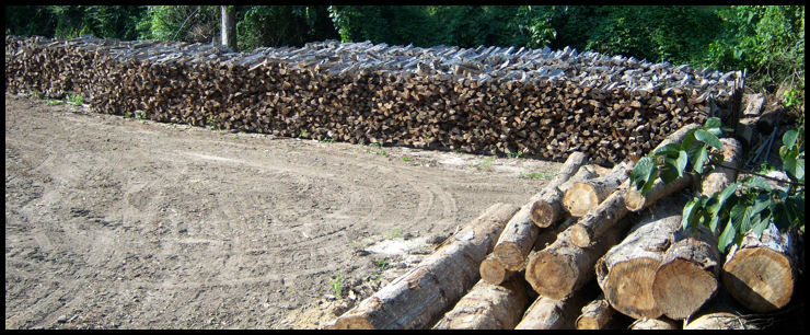 Firewood in Large Quantities