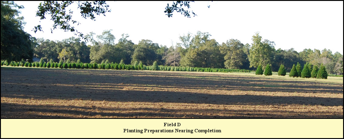 Field D at Shady Pond almost ready for planting.