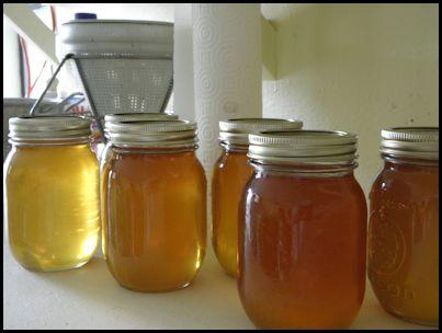 Freshly packaged honey.