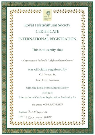 RHS Certificate for Shady Pond's Leighton Green-Gernon.