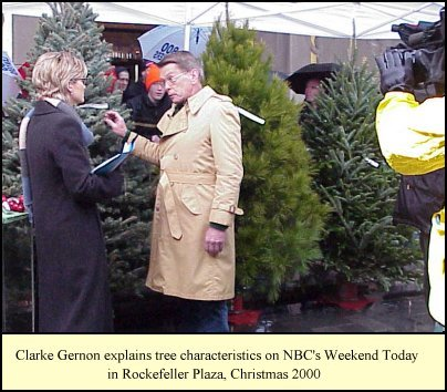 Clarke Gernon on NBC's Weekend Today Show with Ashleigh Banfield, Christmas 2000