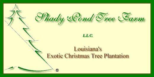shady pond tree farms logo - Christmas Tree Farm Louisiana